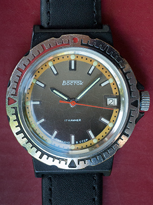 Vostok plastic case 489318